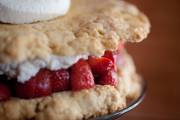 Strawberry Shortcake and Red Head in Bed Drink Recipe (2)