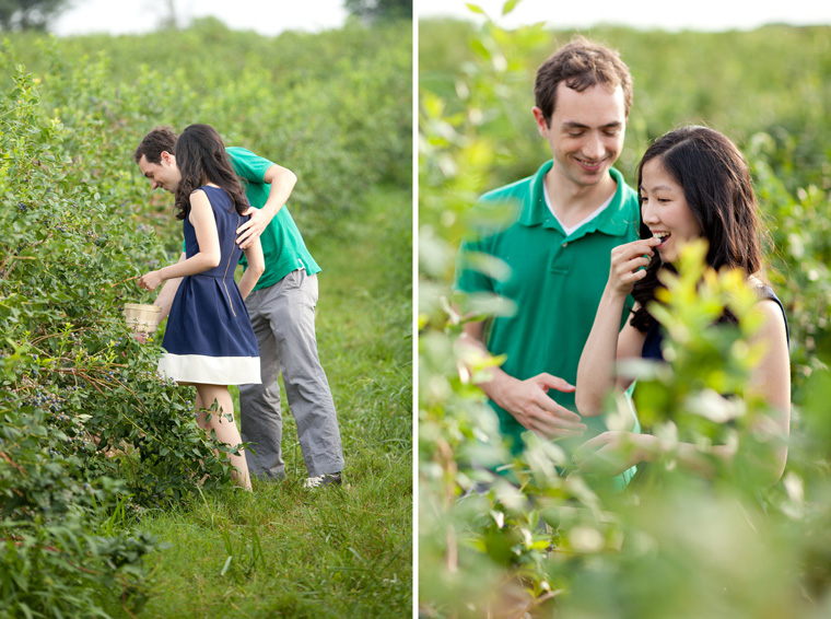 Butler's Orchard Engagement Session Photos by Liz and Ryan Farm Engagement Session Pick Your Own Farm Blueberries Blueberry Soda Blueberry Beer Picnic Engagement Session Maryland Wedding and Engagement Photography Pick Your Own Blueberries Pick Your Own Flowers Flower Fields Photos by Liz and Ryan (18)