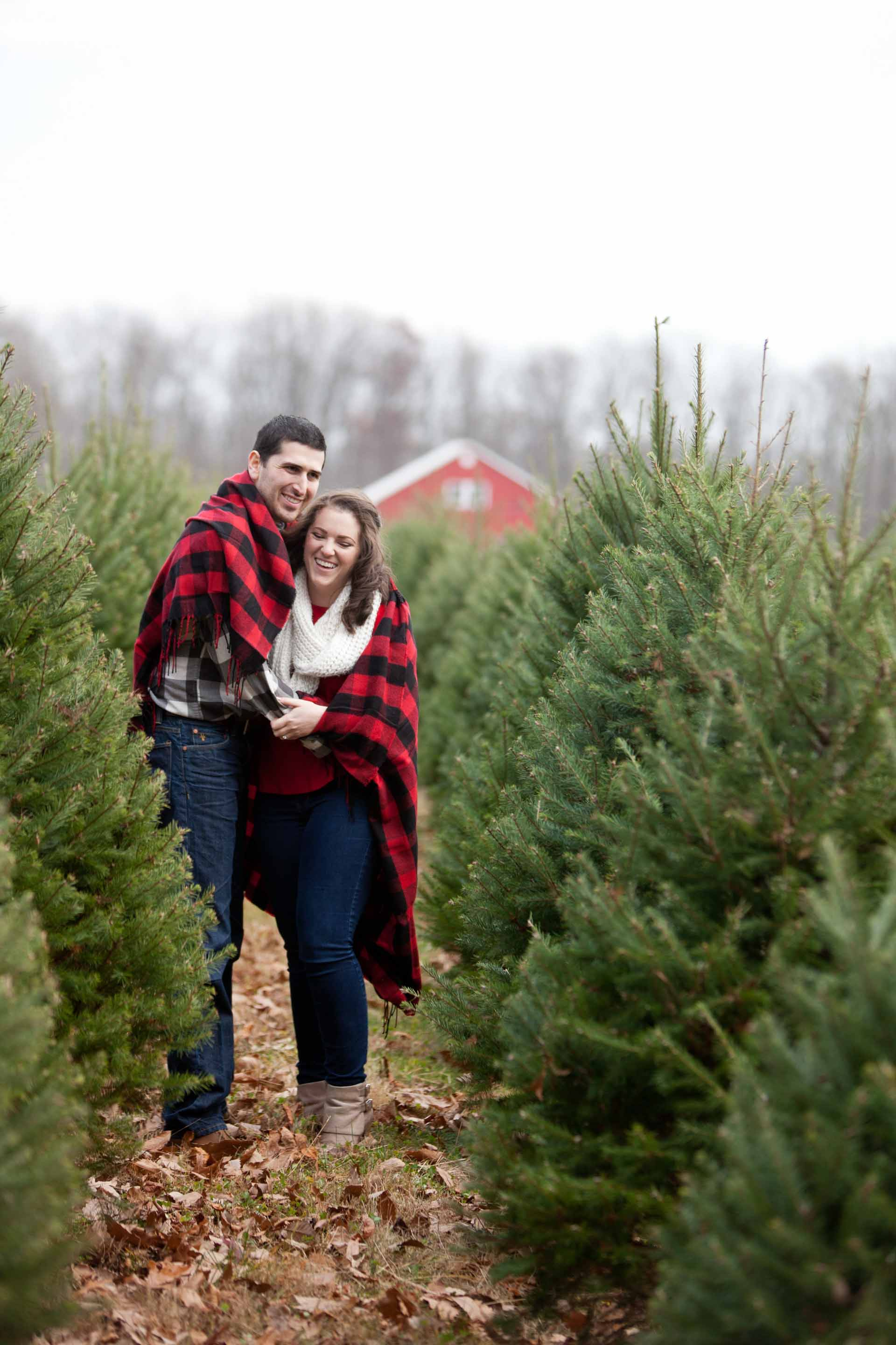 Christmas Tree Farm Photography.Christmas Tree Farm Engagement Session Baltimore Wedding